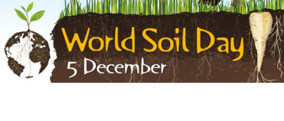 国際土壌年2015応援ポータル – 土が好きな人、集まれ!Healthy Soils ...